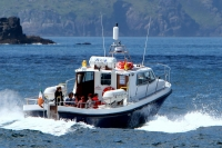 All Day Eco Marine Tour Blasket Island (7hrs)